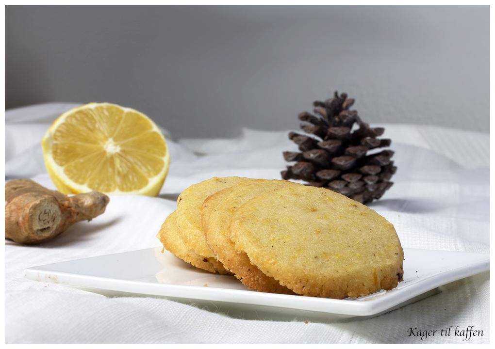 citron og ingefær specier